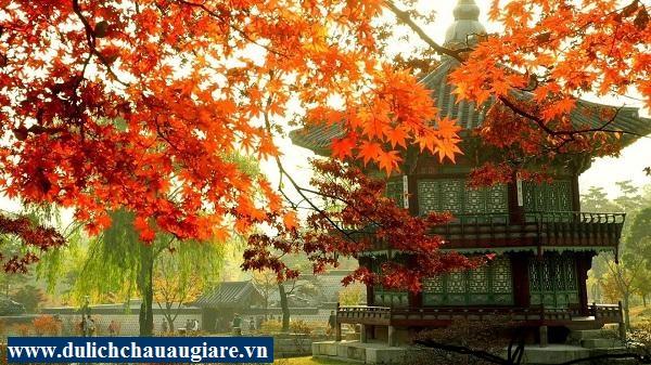 Du lịch Hàn Quốc: SEOUL – NAMI – EVERLAND (5N4Đ)